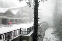 तस्वीरों में देखें, ताजा बर्फबारी से सुहावनी हुईं हिमाचल की वादियां