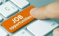 बिहार टेक्निकल सर्विस कमीशन की ओर से जूनियर इंजीनियर पदों के लिए आवेदन आमंत्रित