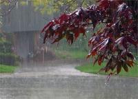 उत्तर प्रदेश में बुधवार को कई जगह बारिश का अनुमान