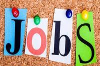 इस विभाग में निकली है 400 नौकरियां , जल्द करें आवेदन