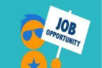 इस विभाग में निकली है 700 से ज्यादा नौकरियां, 8वीं पास भी कर सकते है आवेदन