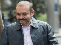 PNB घोटाला: गिरफ्तार नीरव मोदी को नहीं मिली जमानत, 29 मार्च तक कस्टडी में