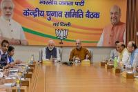 भाजपा ने लोकसभा चुनाव के लिए जारी की उम्मीदवारों की एक और सूची