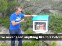 अनोेखी लाइब्रेरी की तारीफ करके फंसे ऑस्ट्रेलिया के पूर्व PM, उड़ रहा मजाक (VIDEO)