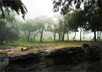 मध्यप्रदेश के पचमढ़ी में घूमें और पाएं जन्नत का अहसास
