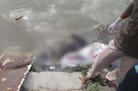 BSL नहर में तैरता मिला शव, नहीं हो पाई शिनाख्त (Watch Video)