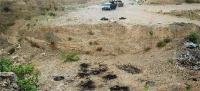 मेक्सिको में सामूहिक कब्र से 35 शव मिले