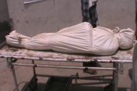 अनाज मंडी में मजदूर को सांप ने डसा, समय पर इलाज न मिलने से मौत
