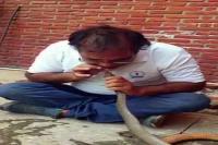 IT अधिकारी ने अपने मुंह से सांप को पानी पिलाकर बचाई उसकी जान, देखकर हैरान रह गए लोग