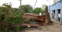 उत्तर प्रदेश: आंधी-तूफान में 19 लोगों की मौत, 48 घायल