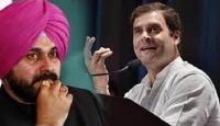 कैप्टन से नाराज सिद्धू राहुल गांधी से मिलने दिल्ली पहुंचे
