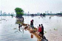 गुडग़ांव-कैनाल नहर टूटने से सैकड़ों एकड़ खेत जलमग्न