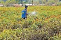 पढ़े-लिखे बेरोजगारों को कमलनाथ सरकार का बड़ा तोहफा, सरकारी भूमि पर कर सकेंगे खेती