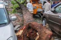उत्तर प्रदेश में आफत बना आंधी और तूफान, 17 लोगों गंवाई जान