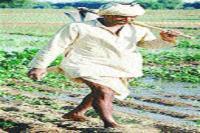 पी.एम. किसान सम्मान राशि से वंचित किसानों का इंतजार खत्म