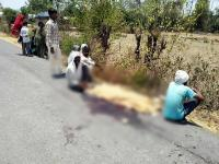 ईंटों से भरे ट्रक ने रौंदी साइकिल सवार लड़की, मौके पर मौत