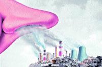 शहर की आबोहवा सांस लेने लायक नहीं, लगातार बढ़ रहा प्रदूषण