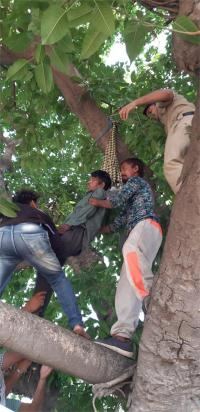 46 वर्षीय व्यक्ति ने पेड़ से फंदा लगाकर दी जान