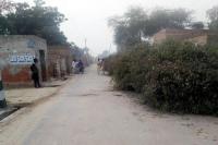सड़कों पर लोगों ने नरमे की 'छटियां' रखकर किए हैं कब्जे