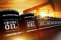 रूस तय करेगा भारत में भविष्य के पेट्रोल और डीजल के दाम, आज हो सकता है निर्णय !