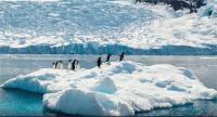 अंटार्कटिका में 7.5 तीव्रता का भूकंप, सुनामी का खतरा नहीं