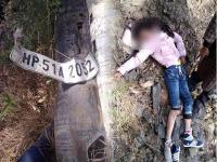 शिमला में दर्दनाक हादसा : कार दुर्घटना में लड़की की मौत-2 घायल (Pics)