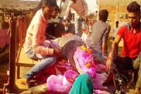 छत्तीसगढ़: मगरमच्छ की मौत से सदमे में गांव, अंतिम विदाई में फूट फूट कर रोए लोग