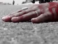 पालमपुर में अज्ञात वाहन ने चालक को मारी टक्कर, मौत