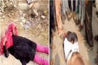 फतेहपुर में दर्दनाक हादसाः बस-जीप की टक्कर में मां-बेटी समेत 6 की मौत, 46 घायल