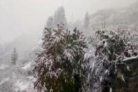 उत्तराखंड में जारी रहेगा ठंड का कहर, मौसम विभाग ने 4 जिलों में जताई बर्फबारी की आशंका