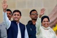 Analysis: जानिए यूपी में किन सीटों पर बसपा और किन सीटों पर सपा लड़ेगी चुनाव