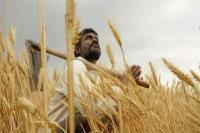 किसानों को मिलेगा 3 लाख रुपए तक का बिना ब्याज लोन, सरकार जल्द कर सकती है ऐलान