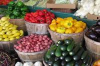 भारत समेत अधिकतर देशों ने अमेरिका के कृषि उत्पादों के लिए अपने बाजार खोले: ट्रंप
