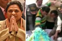 BSP सुप्रीमो मायावती के जन्मदिन पर समर्थकों ने लूटा केक