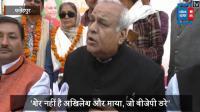 'शेर नहीं है अखिलेश और माया, फिर बनेगी BJP की सरकार'