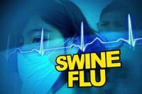 स्वाइन फ्लू की चपेट में आकर 8 मरीजों की हो चुकी मौत, 6 का भिन्न-भिन्न अस्पतालों में चल रहा इलाज