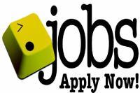 8वीं पास के लिए सरकारी नौकरी पाने का मौका, जल्द करें आवेदन