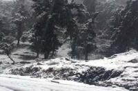 मौसम विभाग का अलर्ट- अगले 48 घंटों में राज्य के 5 जिलों में होगी भारी बर्फबारी