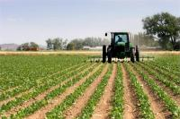 प्रधानमंत्री किसान योजना के तहत फरवरी से ही मिलनी शुरू हो जाएगी छोटे किसानों को मदद