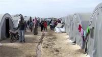 पैसे के लिए 10,000 पाकिस्तानी बने अफगान शरणार्थी