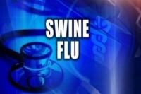 स्वाइन फ्लू ने देशभर में 312 लोगों की मौत, 9 हजार से ज्यादा पीड़ित