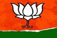 BJP विधायक के विवादित बोल- ''हम सराकार को गिराना और झुकाना जानते हैं''