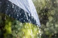 हरियाणा-पंजाब में अगले 3 दिनों में फिर गिर सकते हैं ओले