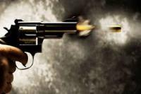 खाने को लेकर झगड़े के बाद मेहमानों ने गोली चलाई, वेटर घायल