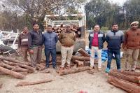 वन विभाग ने पकड़ा खैर की लकड़ी से भरा ट्राला, चालक हिरासत में (Video)