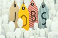 10वीं पास के लिए इस विभाग में निकली है 300 से ज्यादा नौकरियां, ऐसे करें आवेदन