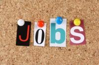 ग्रैजुएट के लिए 500 से ज्यादा सरकारी नौकरियां, जल्द करें आवेदन