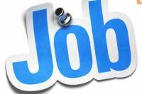 800 से ज्यादा सरकारी नौकरियां, 10वीं पास भी कर सकते आवेदन