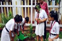 मध्यप्रदेश में एप्को ने दी650 बच्चों को दी प्रकृति और पर्यावरण के बारे में जानकारी