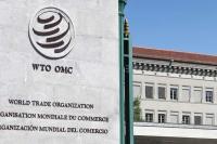 भारत का आयात शुल्क ऊंचा नहीं, WTO के वैश्विक व्यापार नियमों के अनुरूप: सरकार
